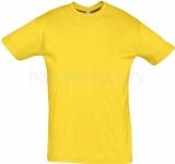Camiseta de Balonmano SOLS Regent 11380-301